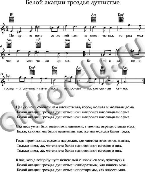 «Белой акации гроздья душистые» ноты, аккорды, текст