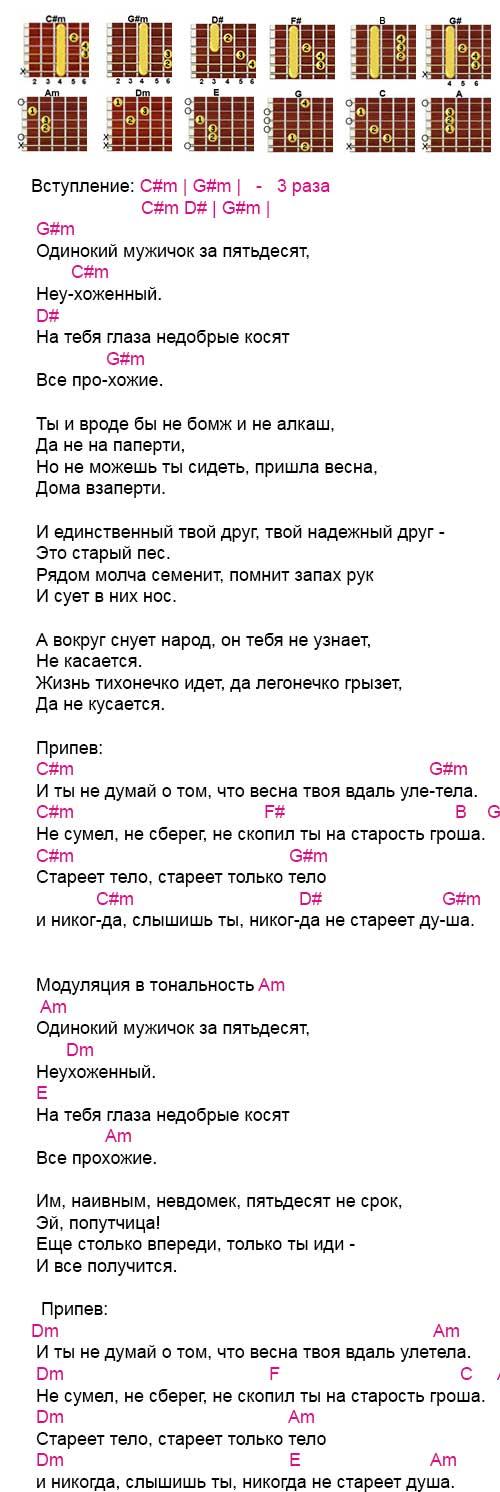 Аккорды к песне «Одинокий мужичок за 50» (Дмитрий Василевский)